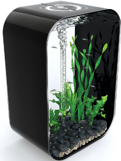 Akvárium pre každého — Zastresene.sk 10 Gallon Home Aquariums